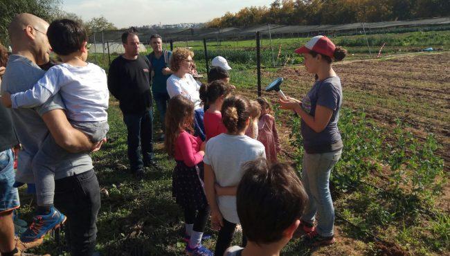 בריא מהשדה בכפר מרדכי